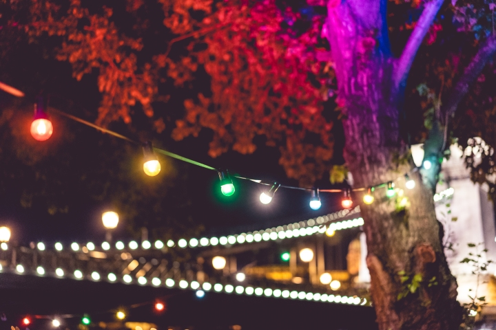 colorful-lights-on-night-garden-party-picjumbo-com